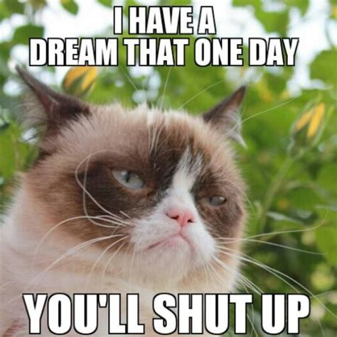 I Have A Dream Meme - martin luther king i have a dream best funny pics humor jokes hilarious grumpy cat