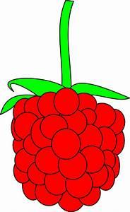 Simple Raspberry Clip Art at Clker.com - vector clip art ...