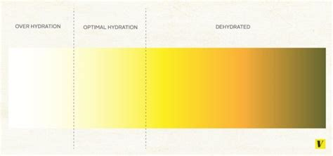what color should your urine be 11 best scales images on colour chart color