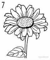 Sunflower Drawing Drawings Draw Girasol Step Sunflowers Easy Flower Flowers Sonnenblume Dibujo Cool2bkids Line Acuarela Daisy Girasoles Dibujar Painting Kunst sketch template