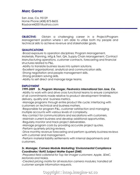 It Manager Resume Exles by 10 Junior Project Manager Resume Payment Format