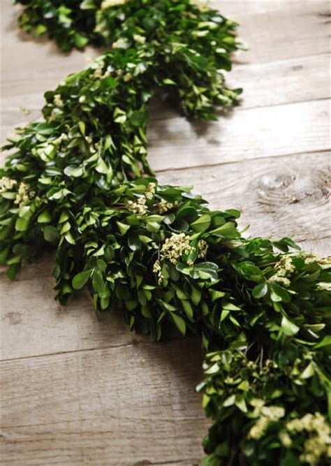 magnolia leaf garland diy preserved boxwood and statice garland