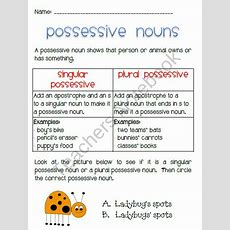 Singular And Plural, Possessive Nouns And Products On Pinterest
