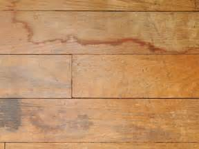 how to fix a water damaged wooden floor apps directories