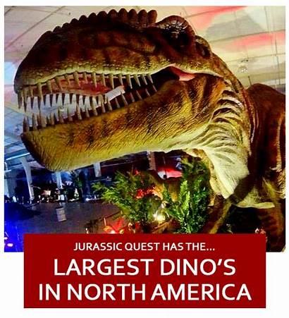 Dinosaur Museum Jurassic Park Near Quest Jurassicquest