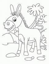 Donkey Coloring Donkeys Ane Printable Dessin Ausmalbilder Coloriage Animal Heureux Animals Superbe Sheet Farm Kinder Erwachsene Sheets Esel Tiere Malvorlagen sketch template