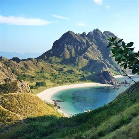 What To Do In Flores Indonesia 48 Best Ind Komodo Images On Pinterest  Come Journey Travel