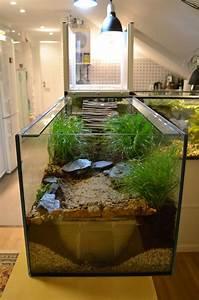 Aquarium Selber Bauen Plexiglas : schildkr ten aquarium guppys und was man alles falsch machen kann seite 2 ~ Watch28wear.com Haus und Dekorationen