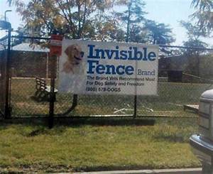 invisible fence really funny pictures collection on With top rated underground dog fence