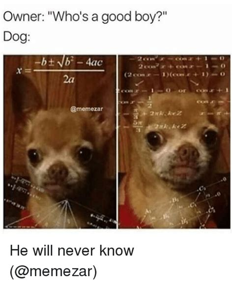 Good Boy Memes - owner who s a good boy dog 4ac conf he will never know meme on sizzle