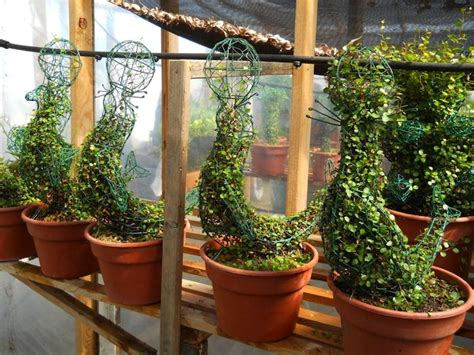 Wholesale Animal Topiaries, Topiary Frames & Shapes Sk