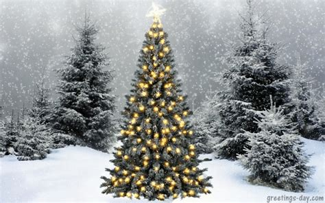 xmas ecards gifs  quotes cards pictures holidays