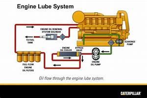 Cat C12 Oil Pump Diagram