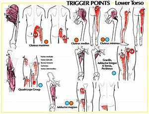 Hips And Lower Back Pain