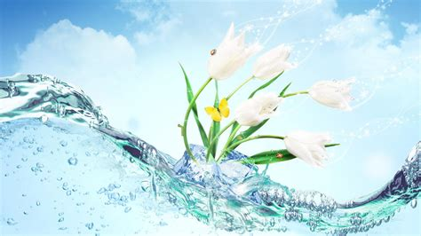 Wallpaper Of Fresh by Flower Wallpapers Best Wallpapers