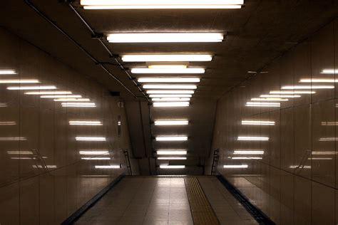 how long do led light bulbs last fluorescent l wikipedia