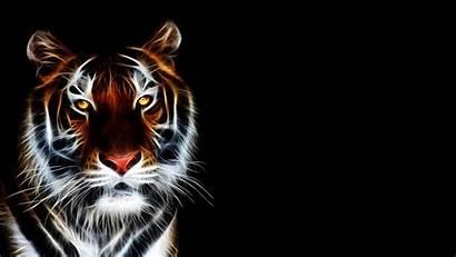 4k 3d Tiger Wallpapers