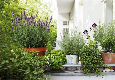 die besten obi inspirationen fuer terrasse und balkon