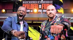 Wilder Fury Fight