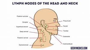 Neck Lump Examination