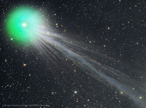 apod  january   complex ion tail  comet lovejoy