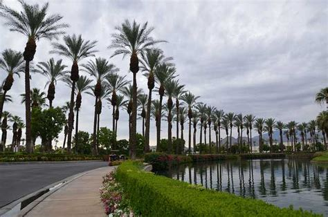 Best Family Vacation in Palm Desert | MiniTime