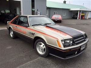 1979 Ford Mustang for Sale | ClassicCars.com | CC-1017410