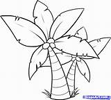 Coloring Tree Pages Palm Colouring Mango sketch template