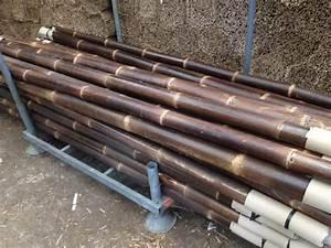 Vorhänge 300 Cm Lang : bamboepalen 300 cm lang stange houthandel ~ Whattoseeinmadrid.com Haus und Dekorationen