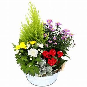 Fleur D Hiver Pour Jardinière : fleurs deuil plantes fleuries pour le cimeti rele blog ~ Dailycaller-alerts.com Idées de Décoration