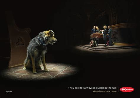 animal abandonment ad campaigns  touch  heart