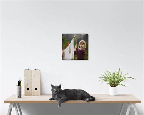 12x12 Acrylic Prints - PrestoPhoto