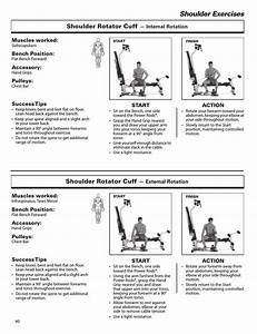 Shoulder Exercises  Shoulder Rotator Cuff