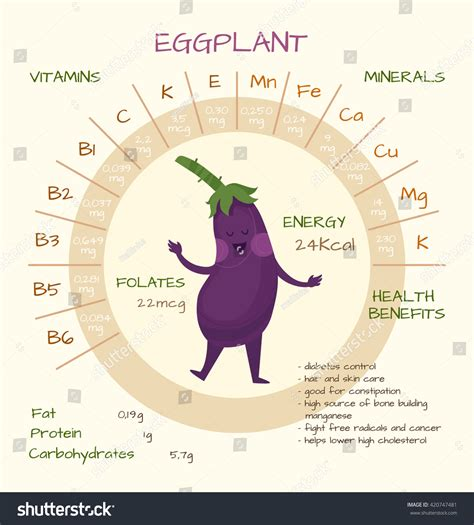 Infographics About Nutrients Eggplant Vector Illustration
