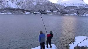shore fishing norway 2 - YouTube