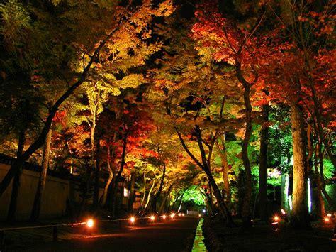 11 stunning photos of landscape lighting pegasus