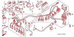 2004 Honda Rancher Wiring Harness