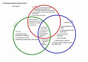 29 Bacteria And Viruses Venn Diagram