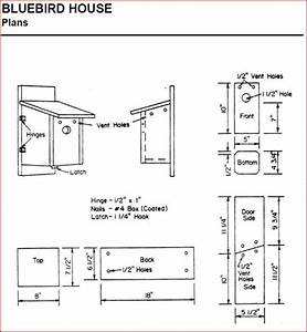 My Project: Download Bluebird house plans