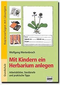 Was Ist Ein Herbarium : 9783871013041 mit kindern ein herbarium anlegen zvab 3871013048 ~ A.2002-acura-tl-radio.info Haus und Dekorationen