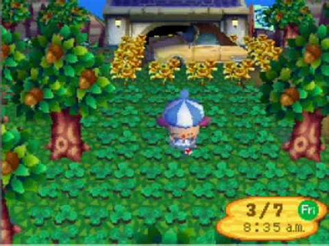 animal crossing wild world emotions uncovered youtube