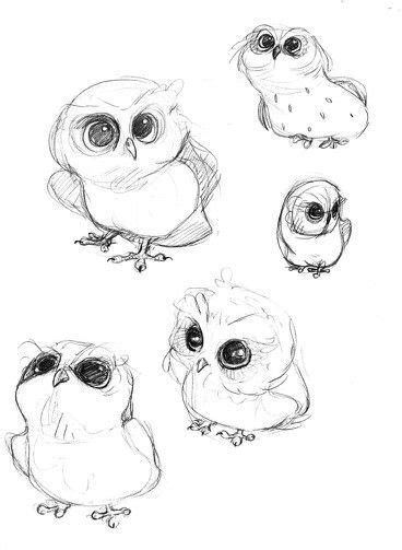 gallery  baby owl sketch illustrations drawings