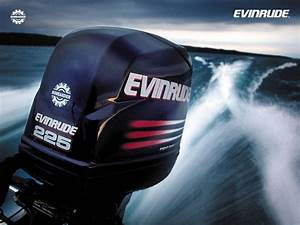 1969 Evinrude Lark Outboard Motor Picture  1974 40hp
