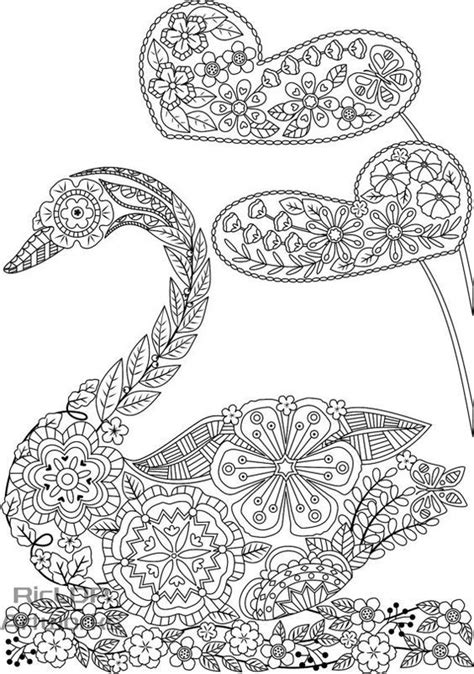 Pin by MarischКа Korepina on coloring swan, flamingo
