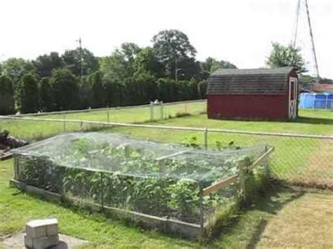 how to keep deer out of vegetable garden keeping animals from your vegetable garden