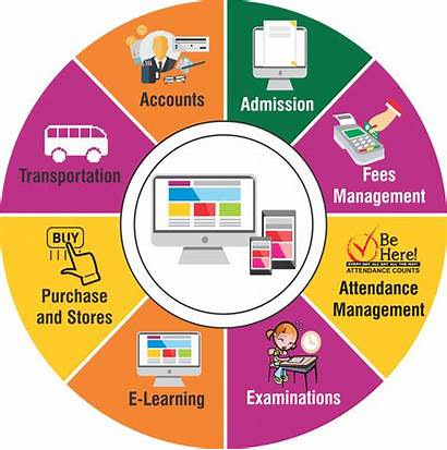 Erp System Management Educational Software Process Marketing