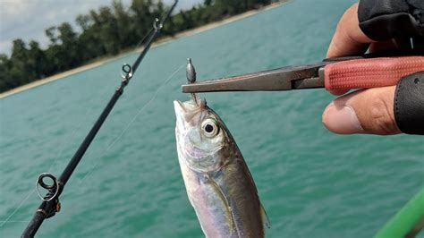 Finally Attempted Sw Fishing! Bedok Jetty, Singapore
