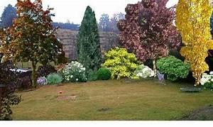 Blühende Sträucher Als Sichtschutz : gestaltung mit s ulenbaum garten garten baum und s ulenbaum ~ Frokenaadalensverden.com Haus und Dekorationen