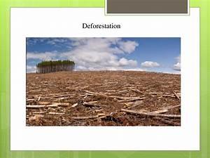 Is Water A Renewable Resource Natural Resource Depletion презентация онлайн