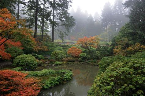 Fall Color Update: October 23, 2017 - Portland Japanese Garden